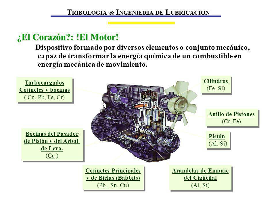 ¿El Corazón?: !El Motor.