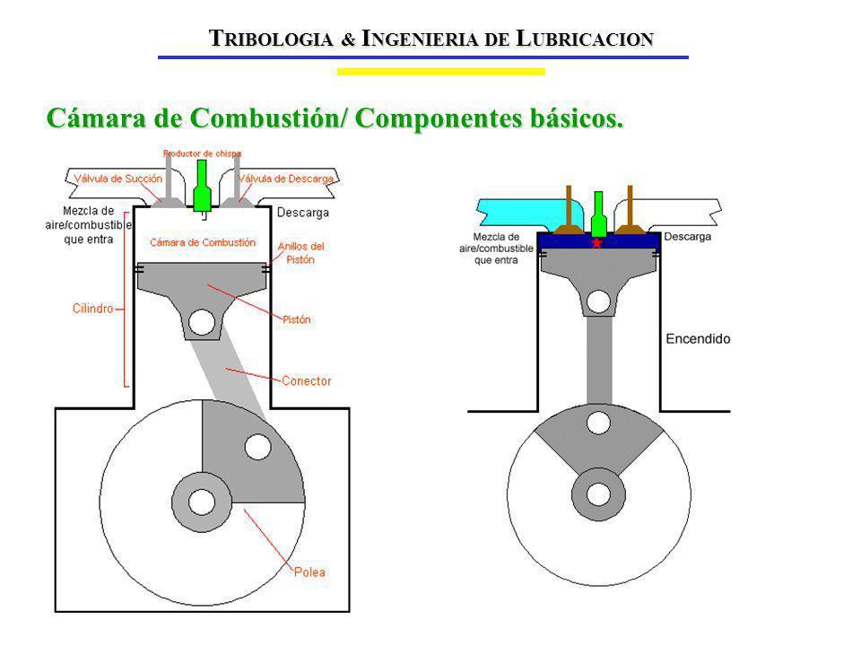 Cámara de Combustión/ Componentes básicos.
