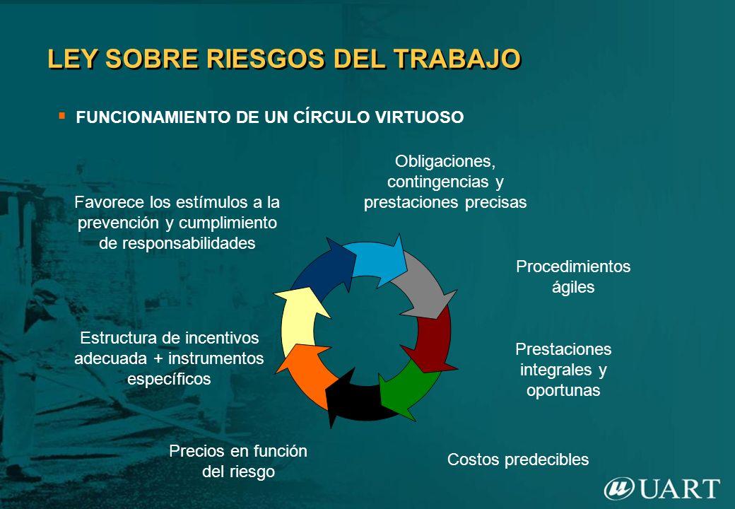 LEY SOBRE RIESGOS DEL TRABAJO FUNCIONAMIENTO DE UN CÍRCULO VIRTUOSO Favorece los estímulos a la prevención y cumplimiento de responsabilidades Estruct