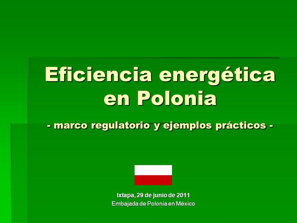 Promoviendo la eficiencia energética Resultados reducción de la emisión de CO2 (206 mil toneladas) reducción de la emisión de CO2 (206 mil toneladas) energía ahorrada (725 GWh) energía ahorrada (725 GWh) los polacos ahorraron 40 millones de dólares en las facturas de energía los polacos ahorraron 40 millones de dólares en las facturas de energía ventas de las lámparas fluorescentes aumentaron de 600 mil (1994) a 1.6 millones (1997) ventas de las lámparas fluorescentes aumentaron de 600 mil (1994) a 1.6 millones (1997) uso de las lámparas fluorescentes en hogares aumentó de 11% a 19% uso de las lámparas fluorescentes en hogares aumentó de 11% a 19%