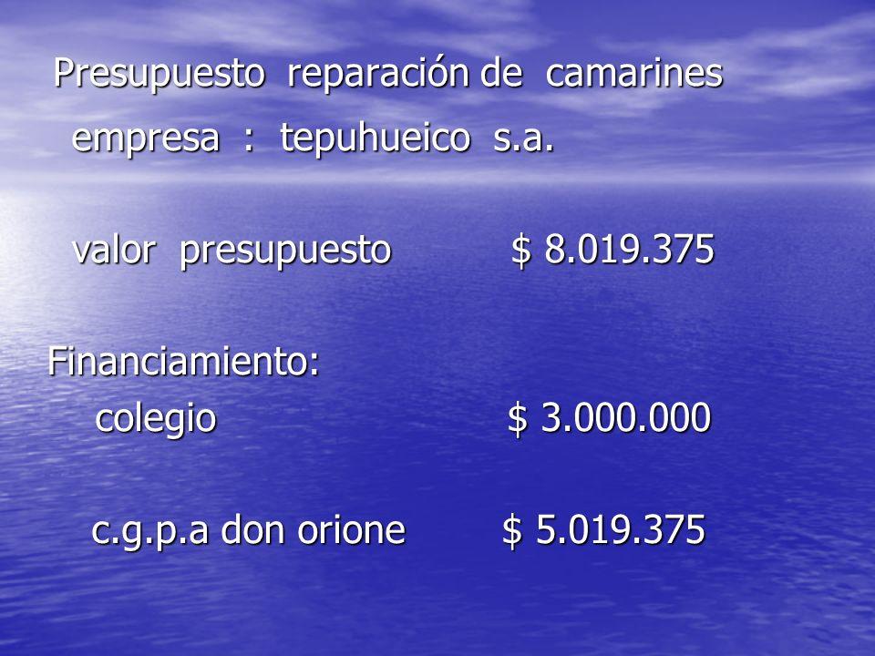 Presupuesto reparación de camarines empresa : tepuhueico s.a. empresa : tepuhueico s.a. valor presupuesto $ 8.019.375 valor presupuesto $ 8.019.375 Fi