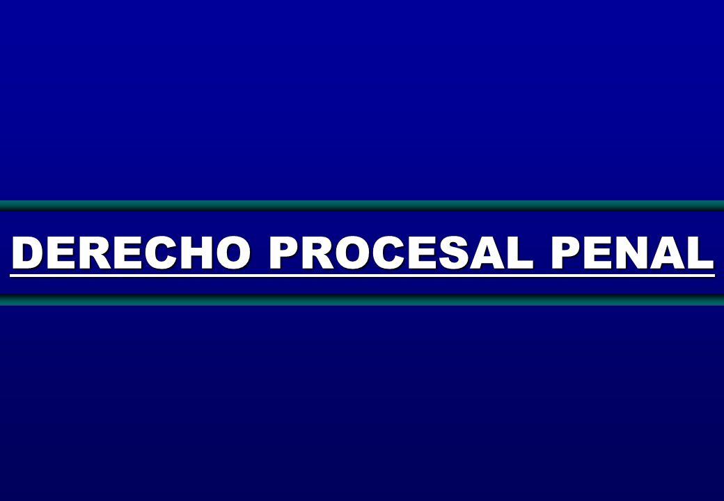 12 PRINCIPIOS PROCESALES Son aquellas máximas que configuran las características esenciales de un proceso.