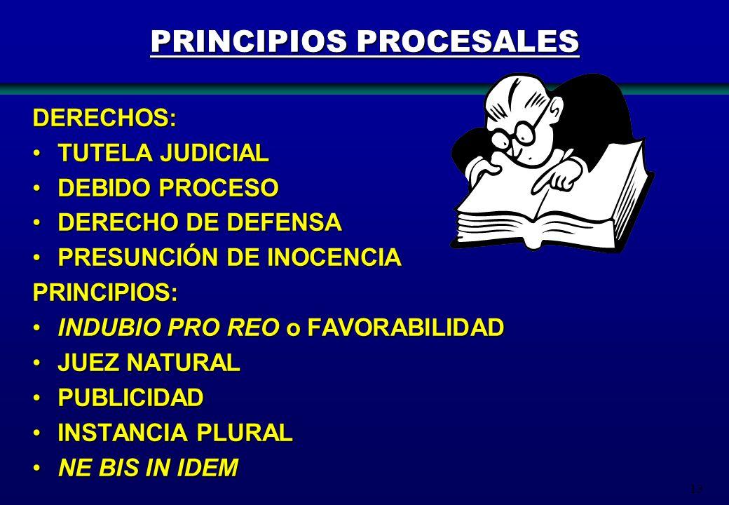 13 PRINCIPIOS PROCESALES DERECHOS: TUTELA JUDICIAL TUTELA JUDICIAL DEBIDO PROCESO DEBIDO PROCESO DERECHO DE DEFENSA DERECHO DE DEFENSA PRESUNCIÓN DE I