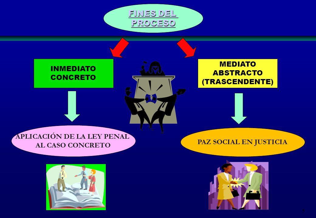 5 FINES DEL FINES DEL PROCESO INMEDIATO CONCRETO MEDIATO ABSTRACTO (TRASCENDENTE) APLICACIÓN DE LA LEY PENAL AL CASO CONCRETO PAZ SOCIAL EN JUSTICIA