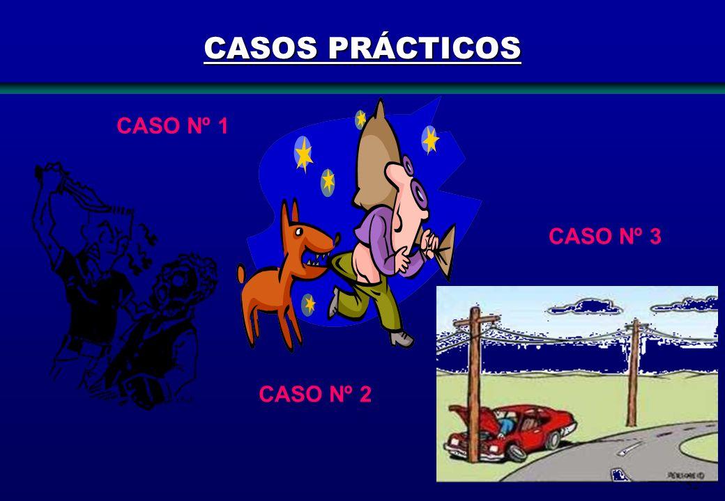 52 CASO Nº 1 CASO Nº 2 CASO Nº 3 CASOS PRÁCTICOS