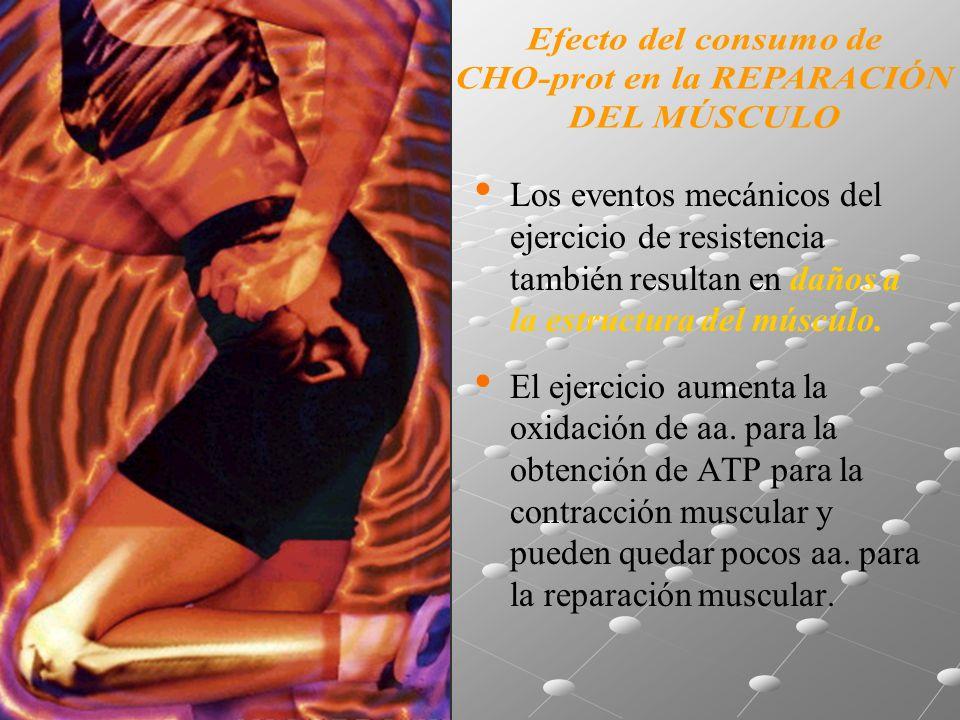 Los eventos mecánicos del ejercicio de resistencia también resultan en daños a la estructura del músculo.