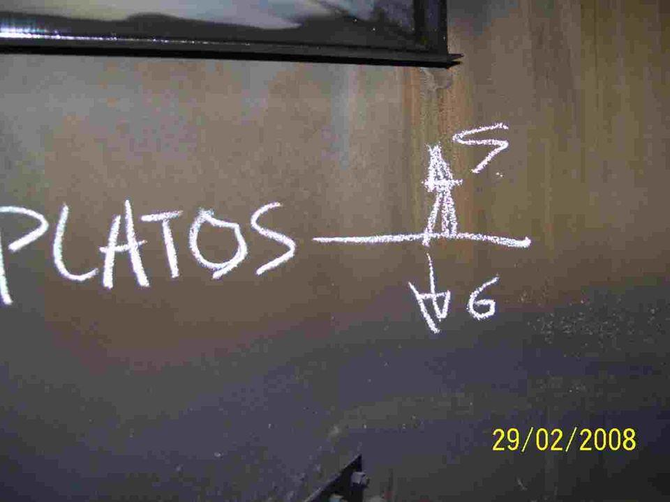 Inspección Platos 1 - 10 F3