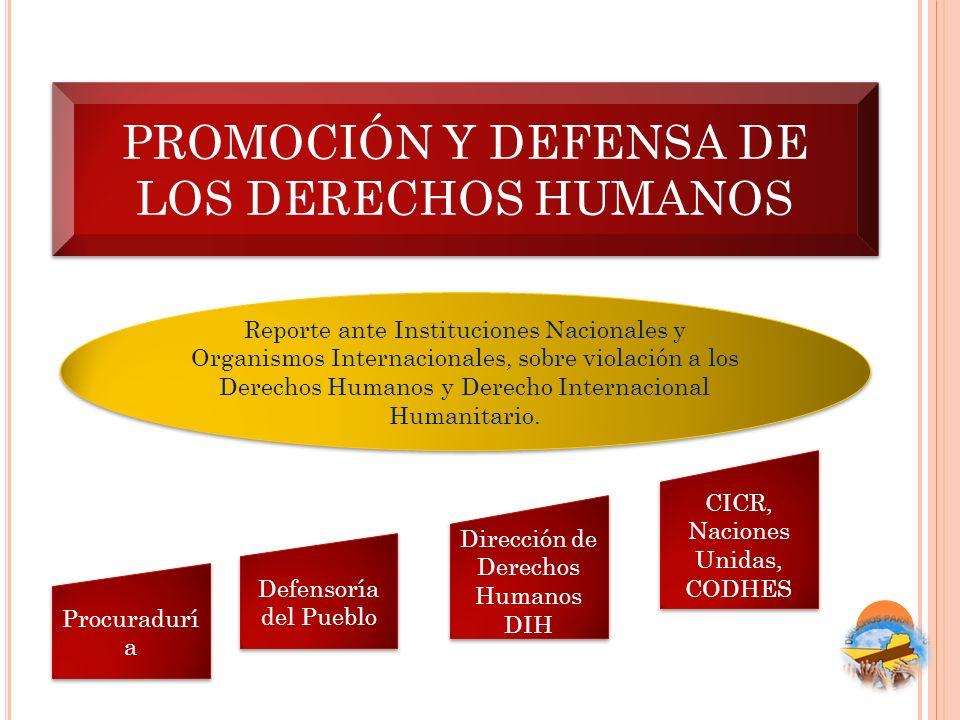 PROMOCIÓN Y DEFENSA DE LOS DERECHOS HUMANOS Reporte ante Instituciones Nacionales y Organismos Internacionales, sobre violación a los Derechos Humanos