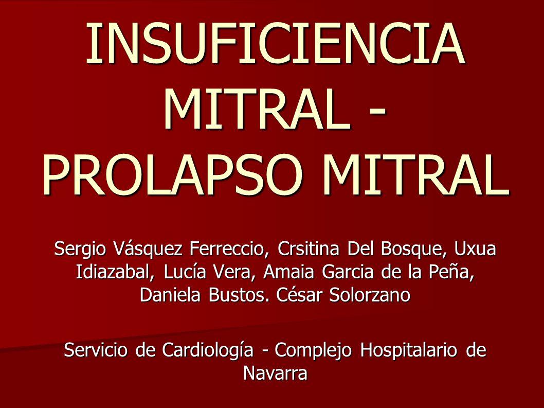 INSUFICIENCIA MITRAL - PROLAPSO MITRAL Sergio Vásquez Ferreccio, Crsitina Del Bosque, Uxua Idiazabal, Lucía Vera, Amaia Garcia de la Peña, Daniela Bus