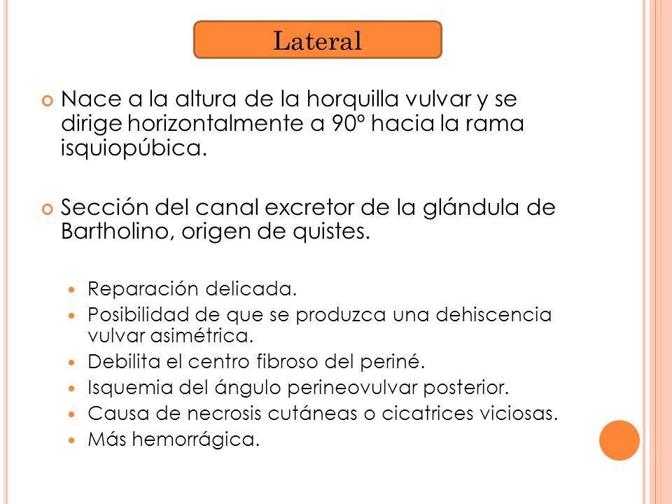 Nace a la altura de la horquilla vulvar y se dirige horizontalmente a 90º hacia la rama isquiopúbica. Sección del canal excretor de la glándula de Bar
