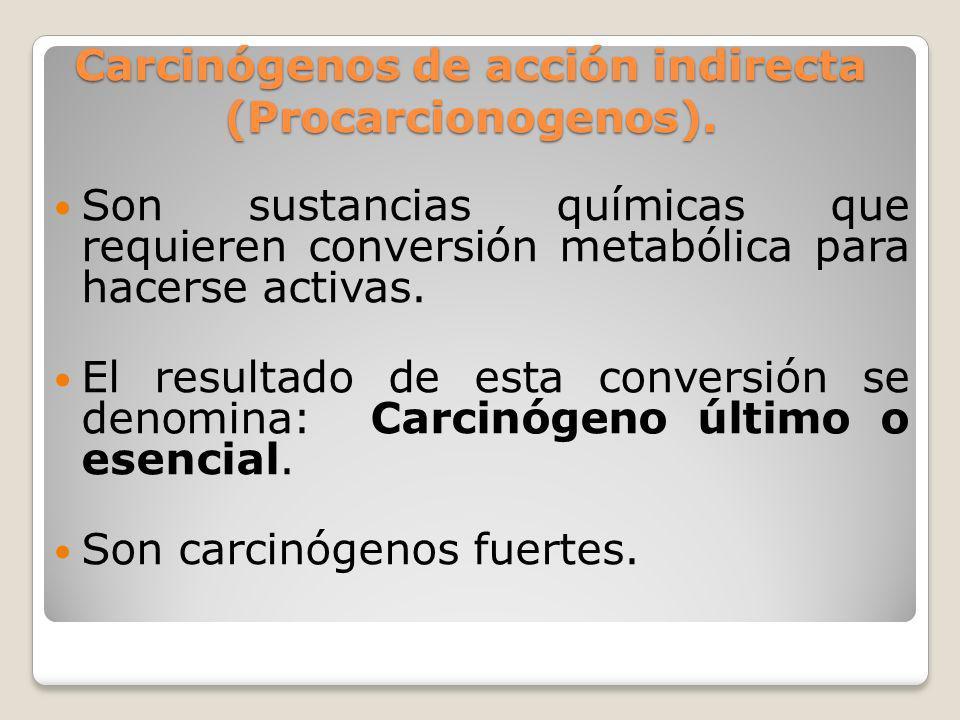 Carcinógenos de acción indirecta (Procarcionogenos). Son sustancias químicas que requieren conversión metabólica para hacerse activas. El resultado de