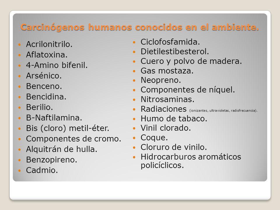 Carcinógenos humanos conocidos en el ambiente. Acrilonitrilo. Aflatoxina. 4-Amino bifenil. Arsénico. Benceno. Bencidina. Berilio. Β-Naftilamina. Bis (