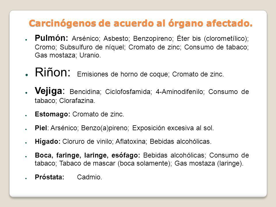 Carcinógenos de acuerdo al órgano afectado. Pulmón: Arsénico; Asbesto; Benzopireno; Éter bis (clorometílico); Cromo; Subsulfuro de níquel; Cromato de