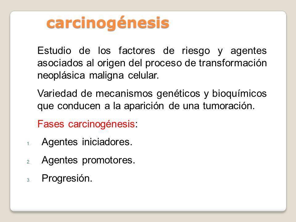 carcinogénesis Estudio de los factores de riesgo y agentes asociados al origen del proceso de transformación neoplásica maligna celular. Variedad de m