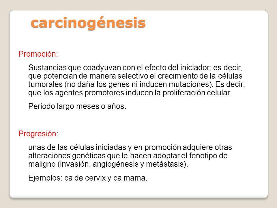 carcinogénesis Promoción: Sustancias que coadyuvan con el efecto del iniciador; es decir, que potencian de manera selectivo el crecimiento de la célul