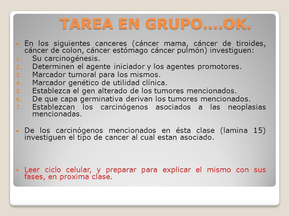 TAREA EN GRUPO….OK. En los siguientes canceres (cáncer mama, cáncer de tiroides, cáncer de colon, cáncer estómago cáncer pulmón) investiguen: 1. Su ca