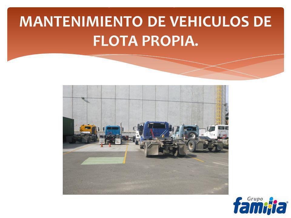 TECHO PARA ZONA DE MANTENIMIENTO DE VEHICULOS DE FLOTA PROPIA.