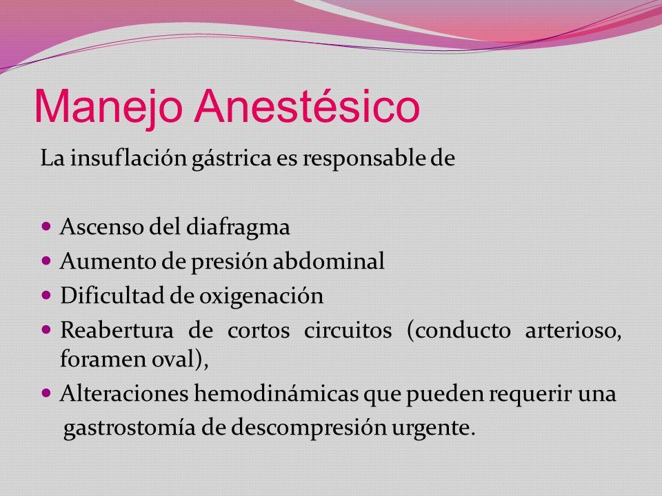 Manejo Anestésico La insuflación gástrica es responsable de Ascenso del diafragma Aumento de presión abdominal Dificultad de oxigenación Reabertura de