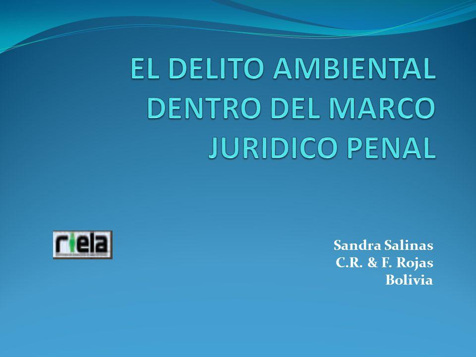 Sandra Salinas C.R. & F. Rojas Bolivia