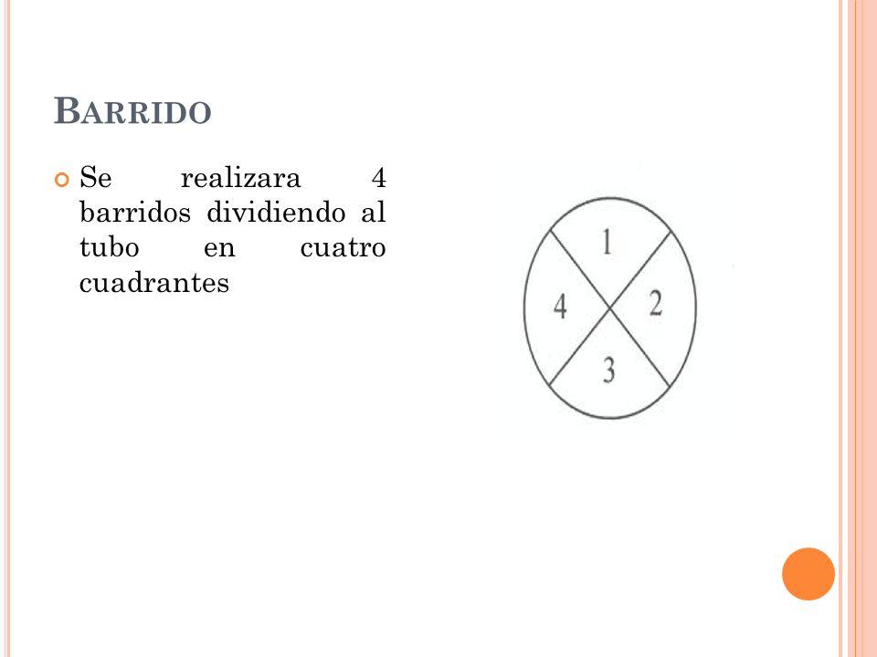 B ARRIDO Se realizara 4 barridos dividiendo al tubo en cuatro cuadrantes