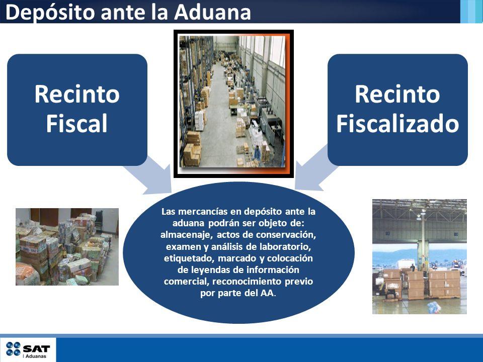 Depósito ante la Aduana Las mercancías en depósito ante la aduana podrán ser objeto de: almacenaje, actos de conservación, examen y análisis de labora