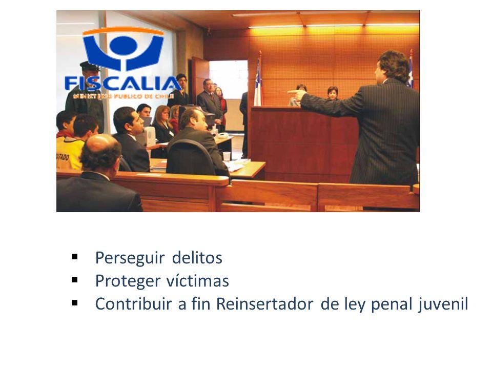 Perseguir delitos Proteger víctimas Contribuir a fin Reinsertador de ley penal juvenil