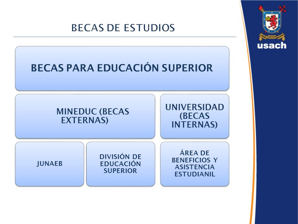 BECAS PARA EDUCACIÓN SUPERIOR MINEDUC (BECAS EXTERNAS) JUNAEB DIVISIÓN DE EDUCACIÓN SUPERIOR UNIVERSIDAD (BECAS INTERNAS) ÁREA DE BENEFICIOS Y ASISTENCIA ESTUDIANIL