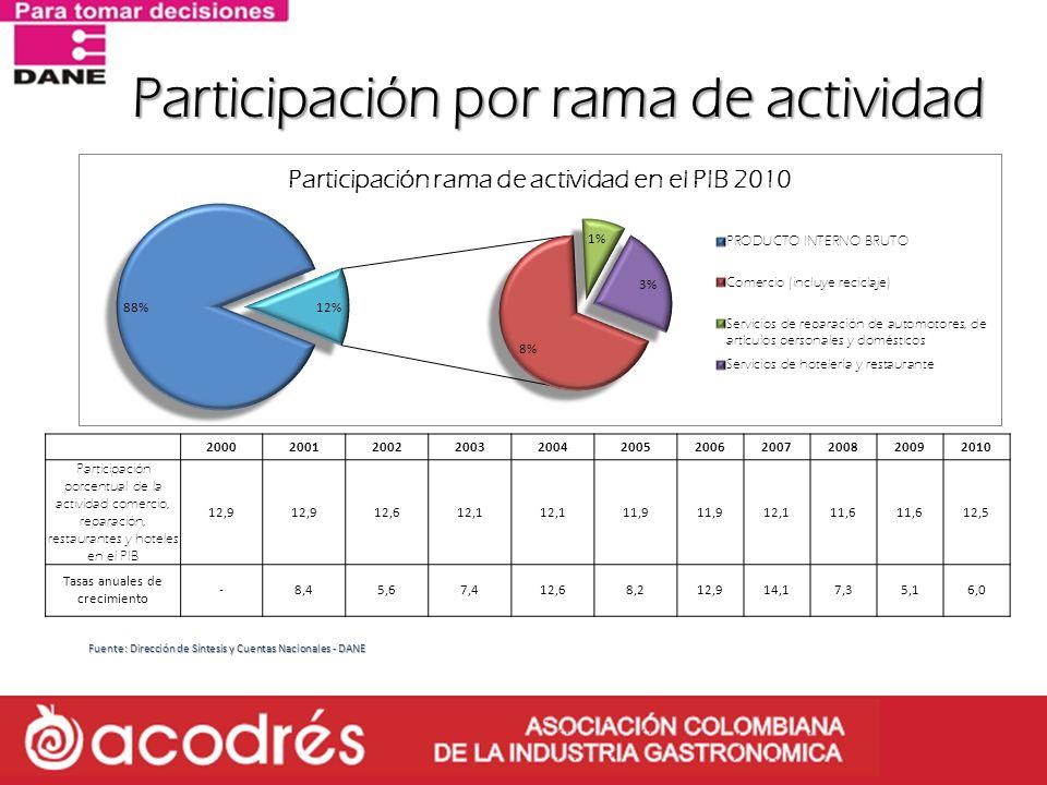 Participación por rama de actividad Fuente: Dirección de Síntesis y Cuentas Nacionales - DANE 20002001200220032004200520062007200820092010 Participaci