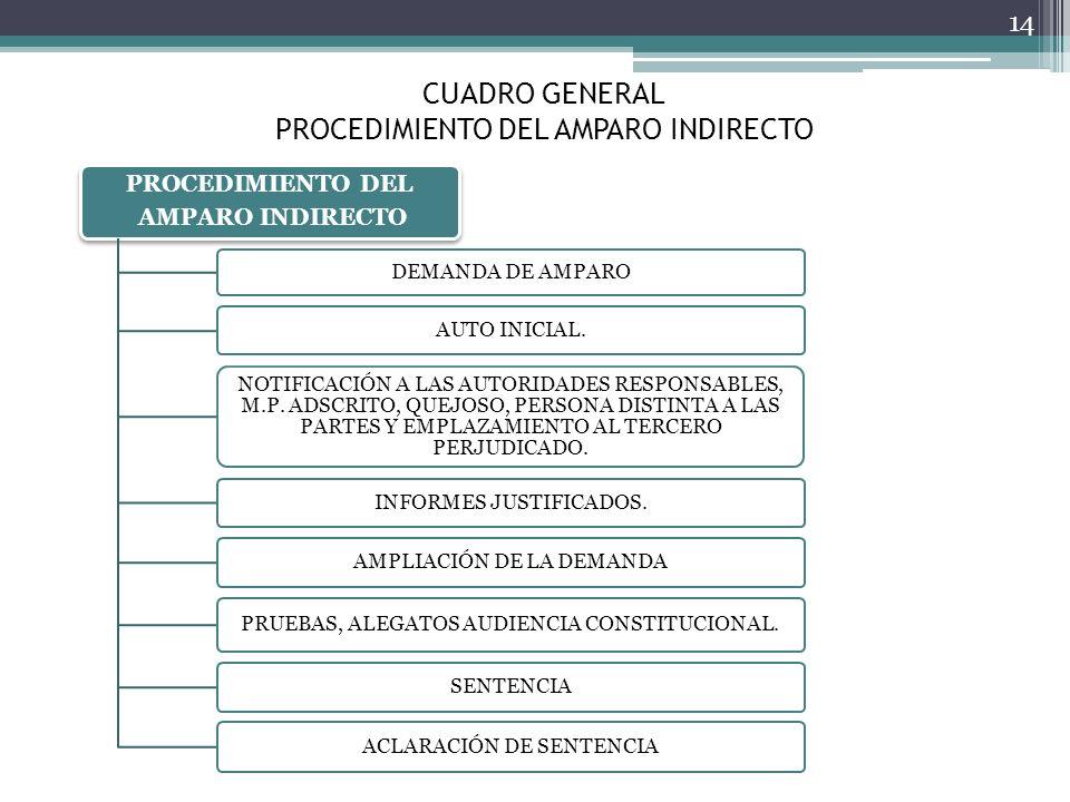 CUADRO GENERAL PROCEDIMIENTO DEL AMPARO INDIRECTO 14 PROCEDIMIENTO DEL AMPARO INDIRECTO DEMANDA DE AMPARO AUTO INICIAL. NOTIFICACIÓN A LAS AUTORIDADES