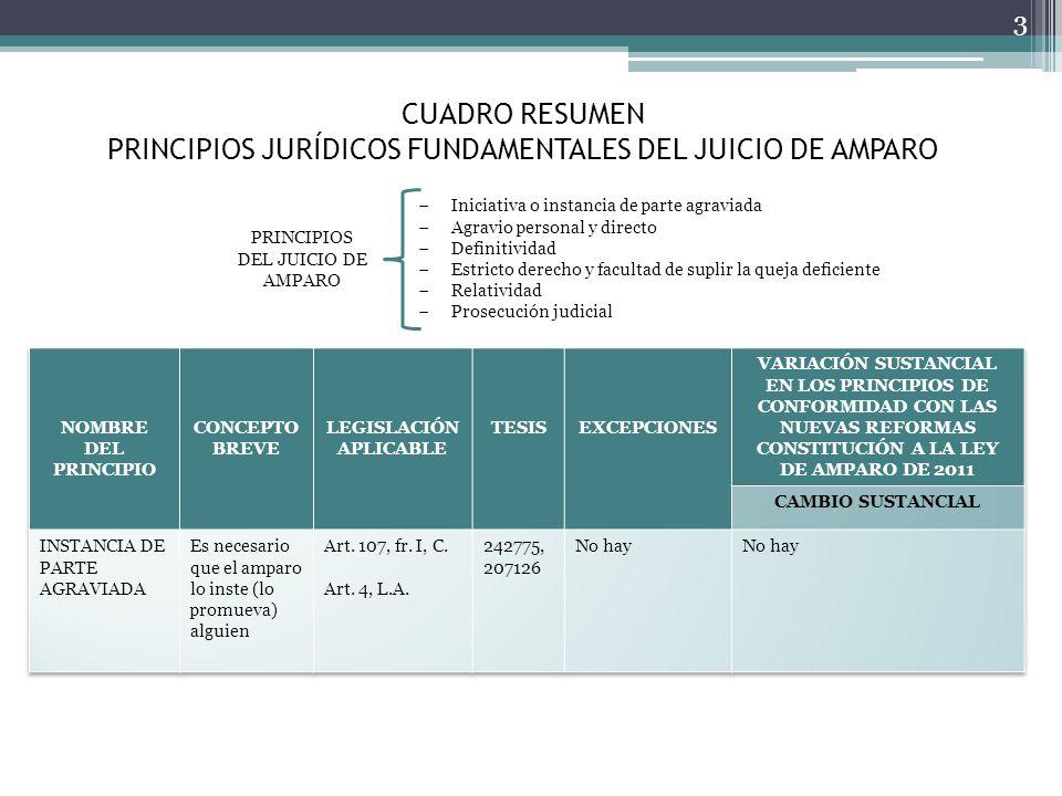 CUADRO RESUMEN PRINCIPIOS JURÍDICOS FUNDAMENTALES DEL JUICIO DE AMPARO 3 Iniciativa o instancia de parte agraviada Agravio personal y directo Definiti