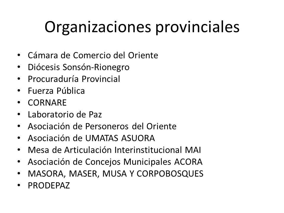 Organizaciones provinciales Cámara de Comercio del Oriente Diócesis Sonsón-Rionegro Procuraduría Provincial Fuerza Pública CORNARE Laboratorio de Paz