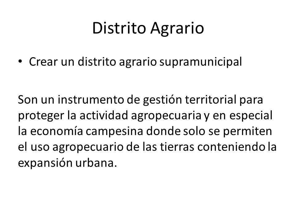 Distrito Agrario Crear un distrito agrario supramunicipal Son un instrumento de gestión territorial para proteger la actividad agropecuaria y en espec