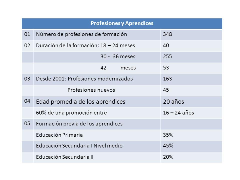 Profesiones y Aprendices 01Número de profesiones de formación348 02Duración de la formación: 18 – 24 meses40 30 - 36 meses255 42 meses53 03Desde 2001: Profesiones modernizados163 Profesiones nuevos45 04 Edad promedia de los aprendices20 años 60% de una promoción entre16 – 24 años 05Formación previa de los aprendices Educación Primaria35% Educación Secundaria I Nivel medio45% Educación Secundaria II20%
