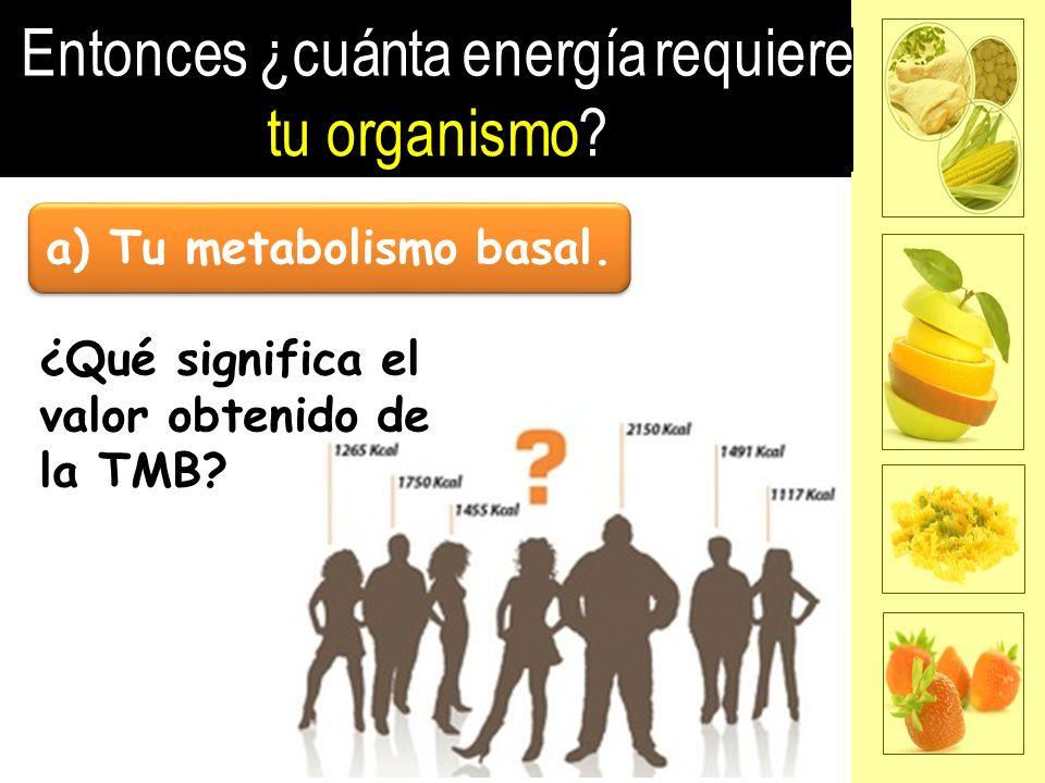 a) Tu metabolismo basal. ¿Qué significa el valor obtenido de la TMB?