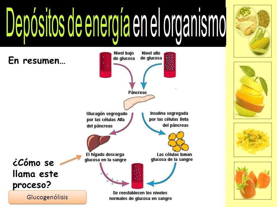En resumen… ¿Cómo se llama este proceso? Glucogenólisis