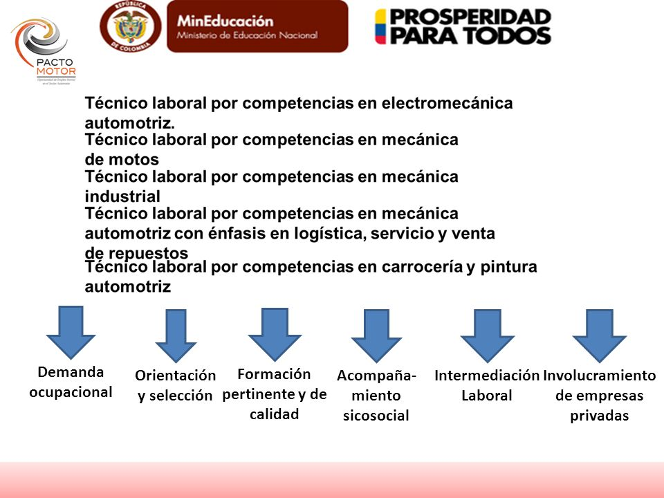 Demanda ocupacional Orientación y selección Formación pertinente y de calidad Involucramiento de empresas privadas Intermediación Laboral Acompaña- mi