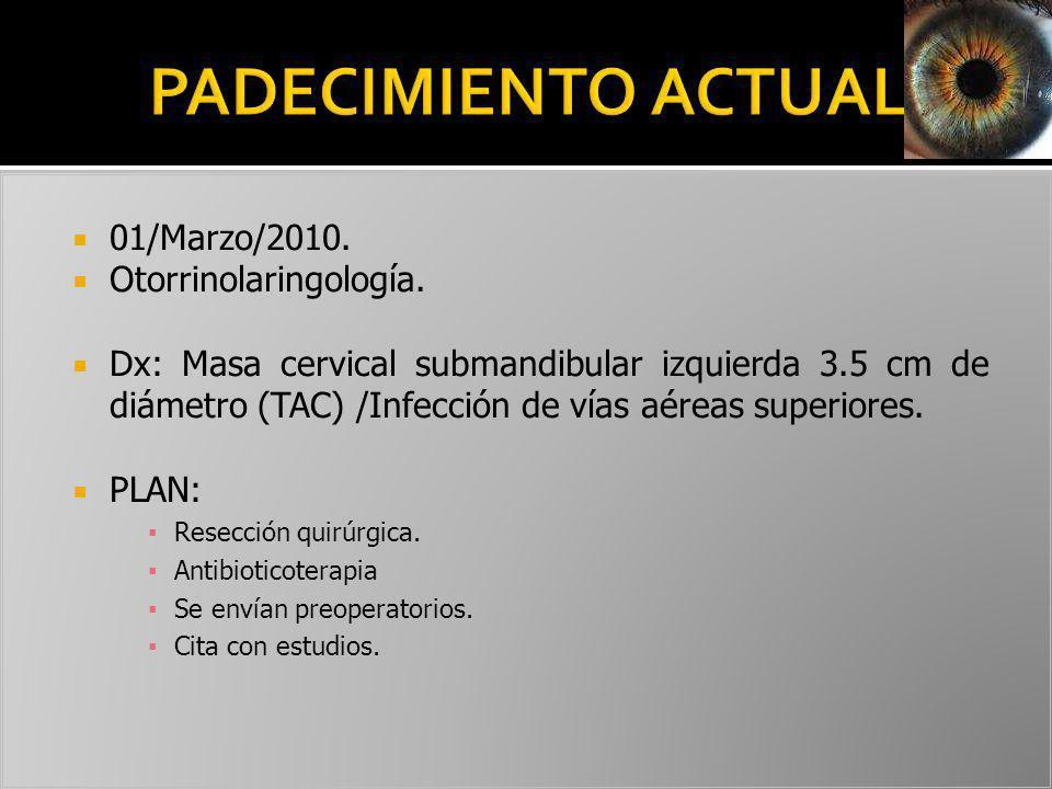 01/Marzo/2010. Otorrinolaringología. Dx: Masa cervical submandibular izquierda 3.5 cm de diámetro (TAC) /Infección de vías aéreas superiores. PLAN: Re