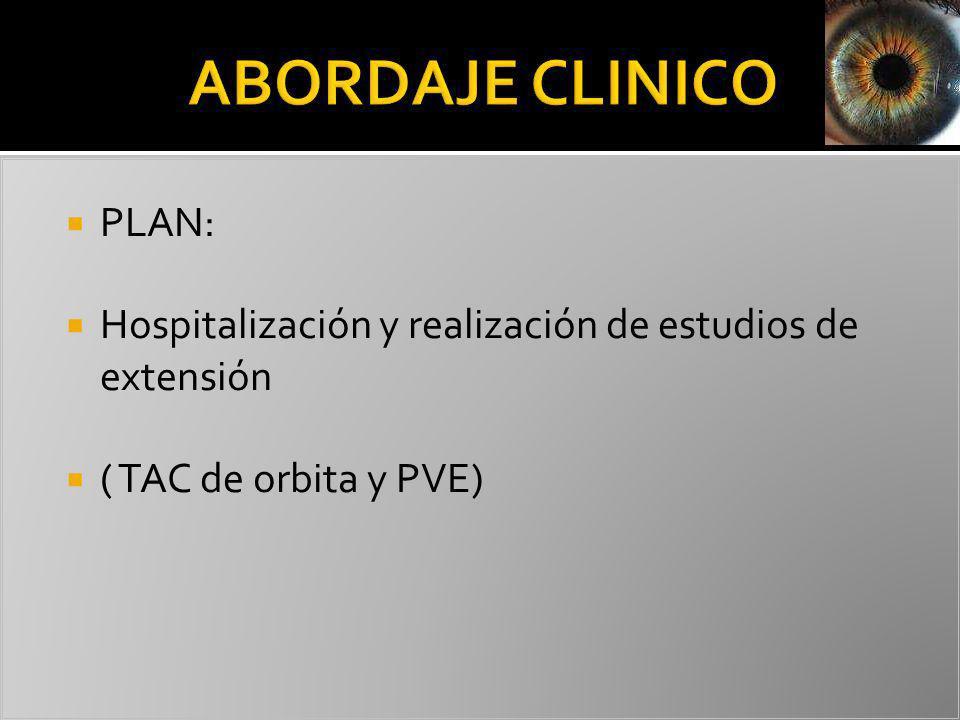 PLAN: Hospitalización y realización de estudios de extensión ( TAC de orbita y PVE)