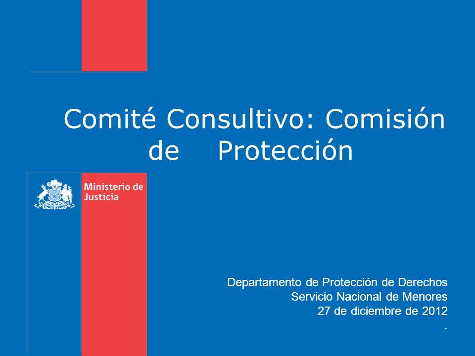 Comité Consultivo: Comisión de Protección Departamento de Protección de Derechos Servicio Nacional de Menores 27 de diciembre de 2012.