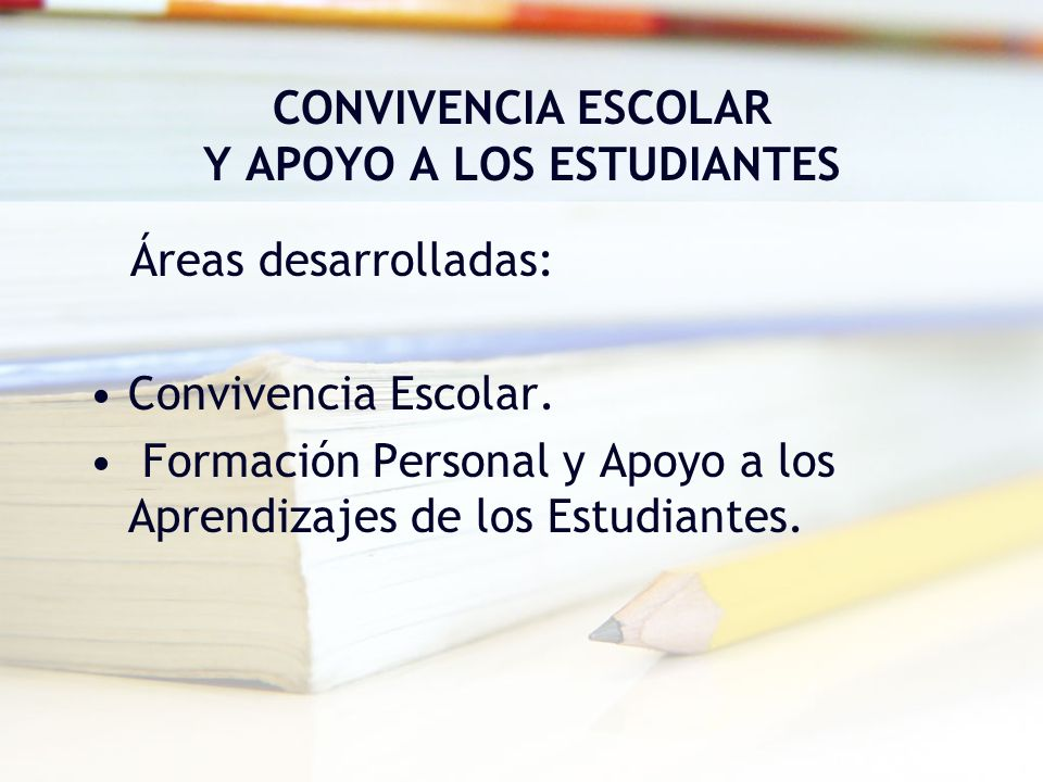 CONVIVENCIA ESCOLAR Y APOYO A LOS ESTUDIANTES Áreas desarrolladas: Convivencia Escolar. Formación Personal y Apoyo a los Aprendizajes de los Estudiant