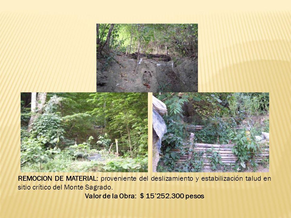 REMOCION DE MATERIAL: proveniente del deslizamiento y estabilización talud en sitio crítico del Monte Sagrado.