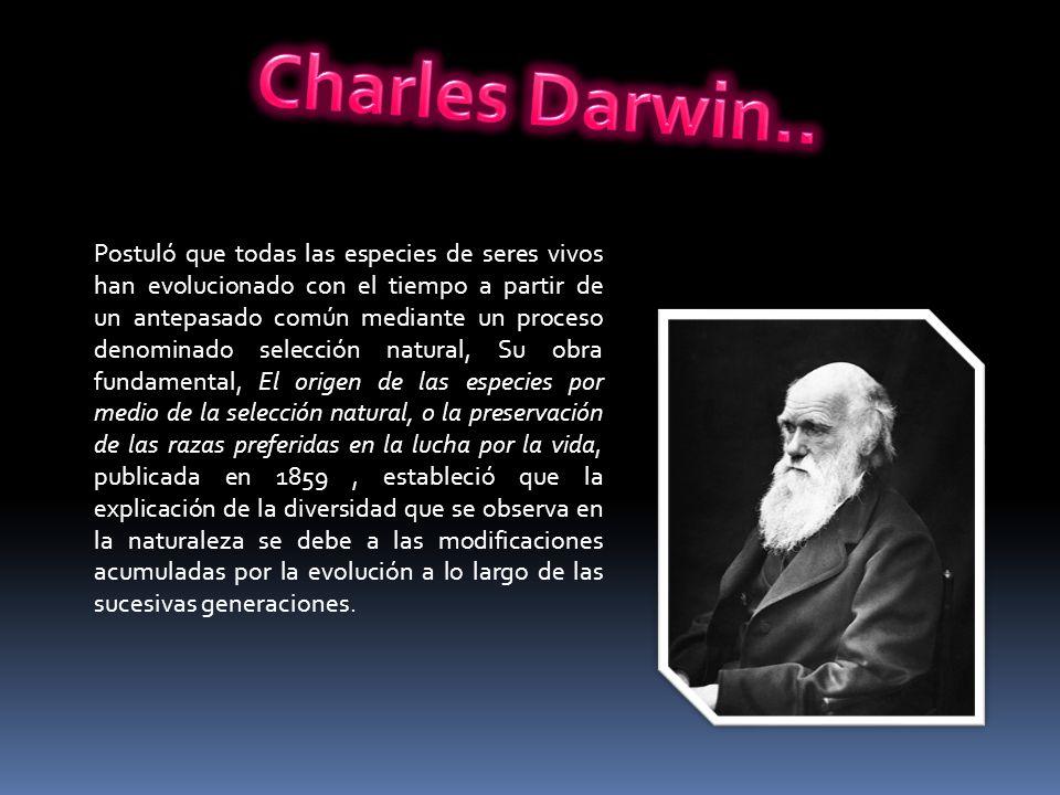 Postuló que todas las especies de seres vivos han evolucionado con el tiempo a partir de un antepasado común mediante un proceso denominado selección