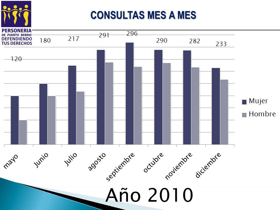 CONSULTAS MES A MES 180 217 291 Año 2010 296