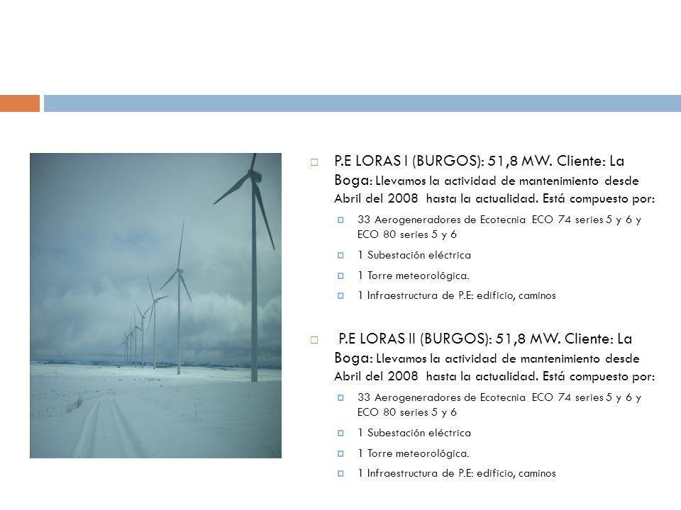 P.E LORAS I (BURGOS): 51,8 MW. Cliente: La Boga : Llevamos la actividad de mantenimiento desde Abril del 2008 hasta la actualidad. Está compuesto por: