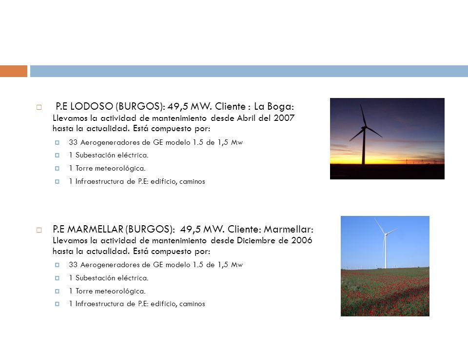 P.E LODOSO (BURGOS): 49,5 MW. Cliente : La Boga: Llevamos la actividad de mantenimiento desde Abril del 2007 hasta la actualidad. Está compuesto por: