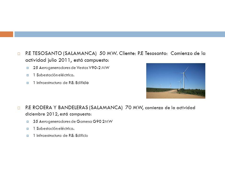 P.E TESOSANTO (SALAMANCA) 50 MW. Cliente: P.E Tesosanto: Comienzo de la actividad julio 2011, está compuesto: 25 Aerogeneradores de Vestas V90-2 MW 1