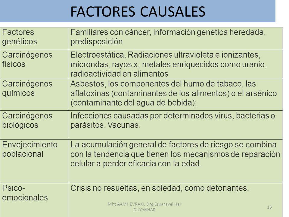 Factores genéticos Familiares con cáncer, información genética heredada, predisposición Carcinógenos físicos Electroestática, Radiaciones ultravioleta
