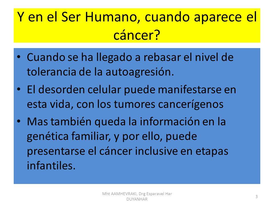 Y en el Ser Humano, cuando aparece el cáncer? Cuando se ha llegado a rebasar el nivel de tolerancia de la autoagresión. El desorden celular puede mani