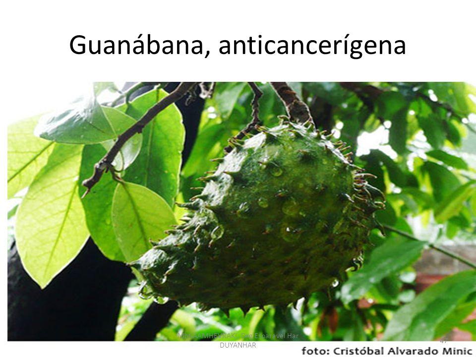 Guanábana, anticancerígena 47 Mht AAMHEVRAKI, Drg Esparavel Har DUYANHAR