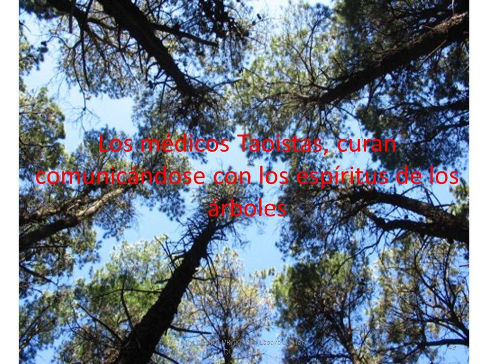 Los médicos Taoistas, curan comunicándose con los espíritus de los árboles 49 Mht AAMHEVRAKI, Drg Esparavel Har DUYANHAR